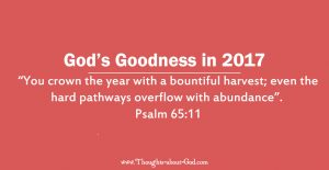 God's Goodness in 2017
